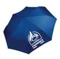 parapluie-bleu-3943